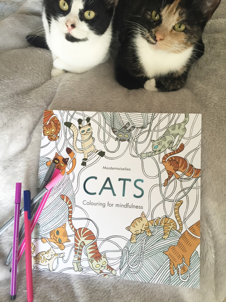 Cats colouring